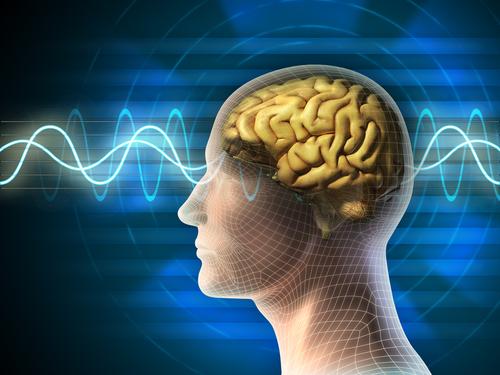 brain&cognition